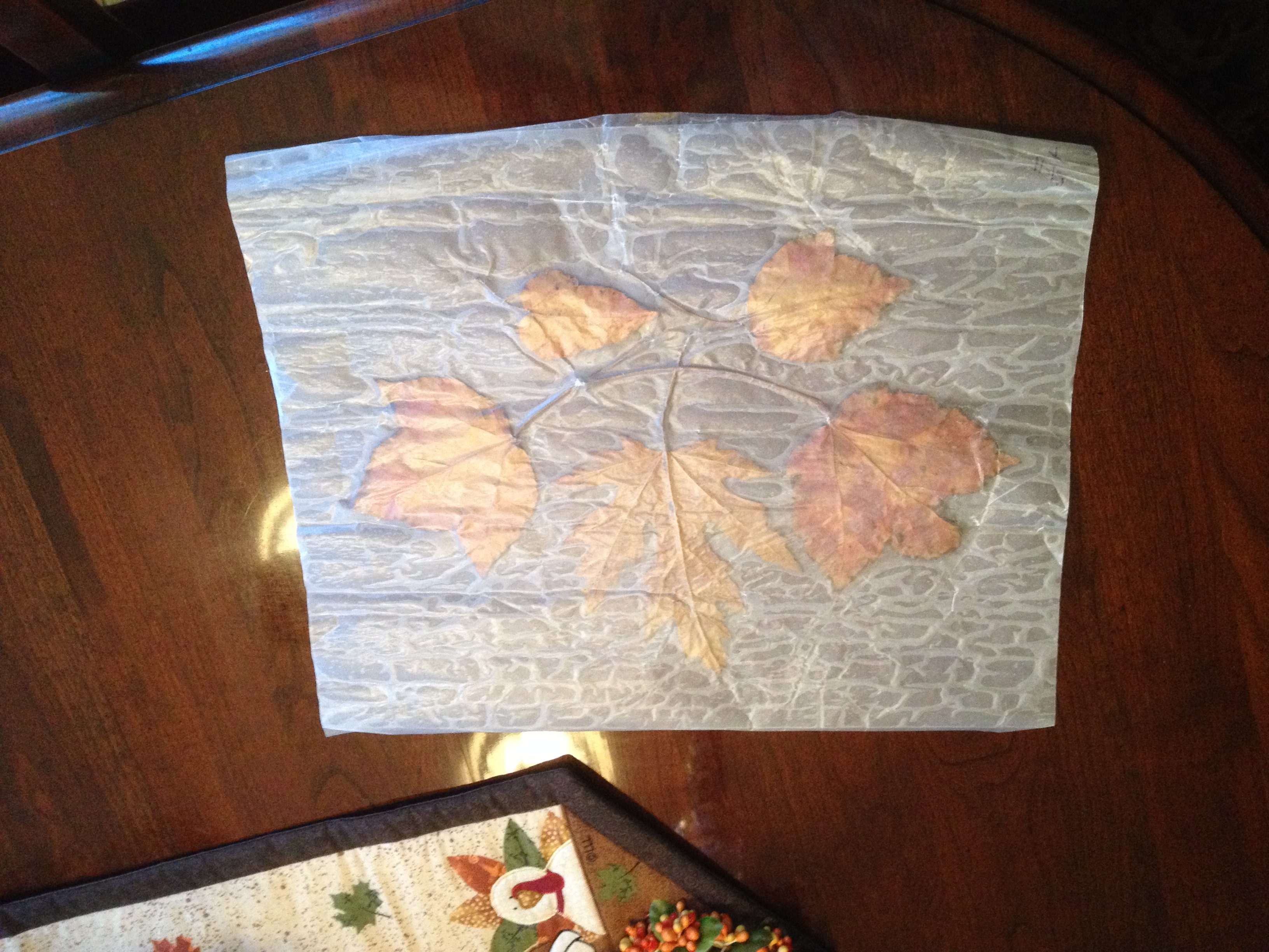 How To Make Homemade Fall Leaf Placemats