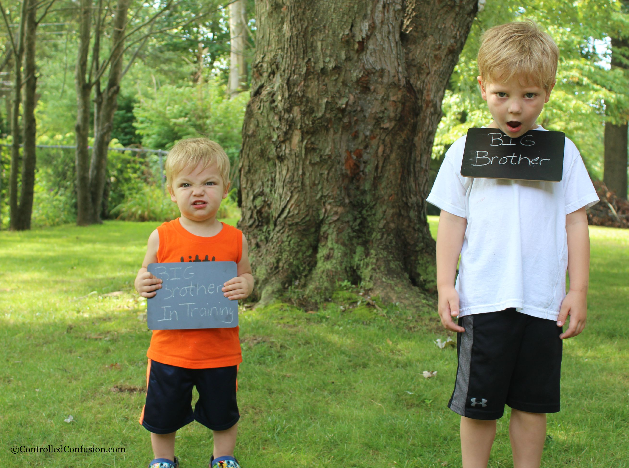 Wordless Wednesday- Big Brothers