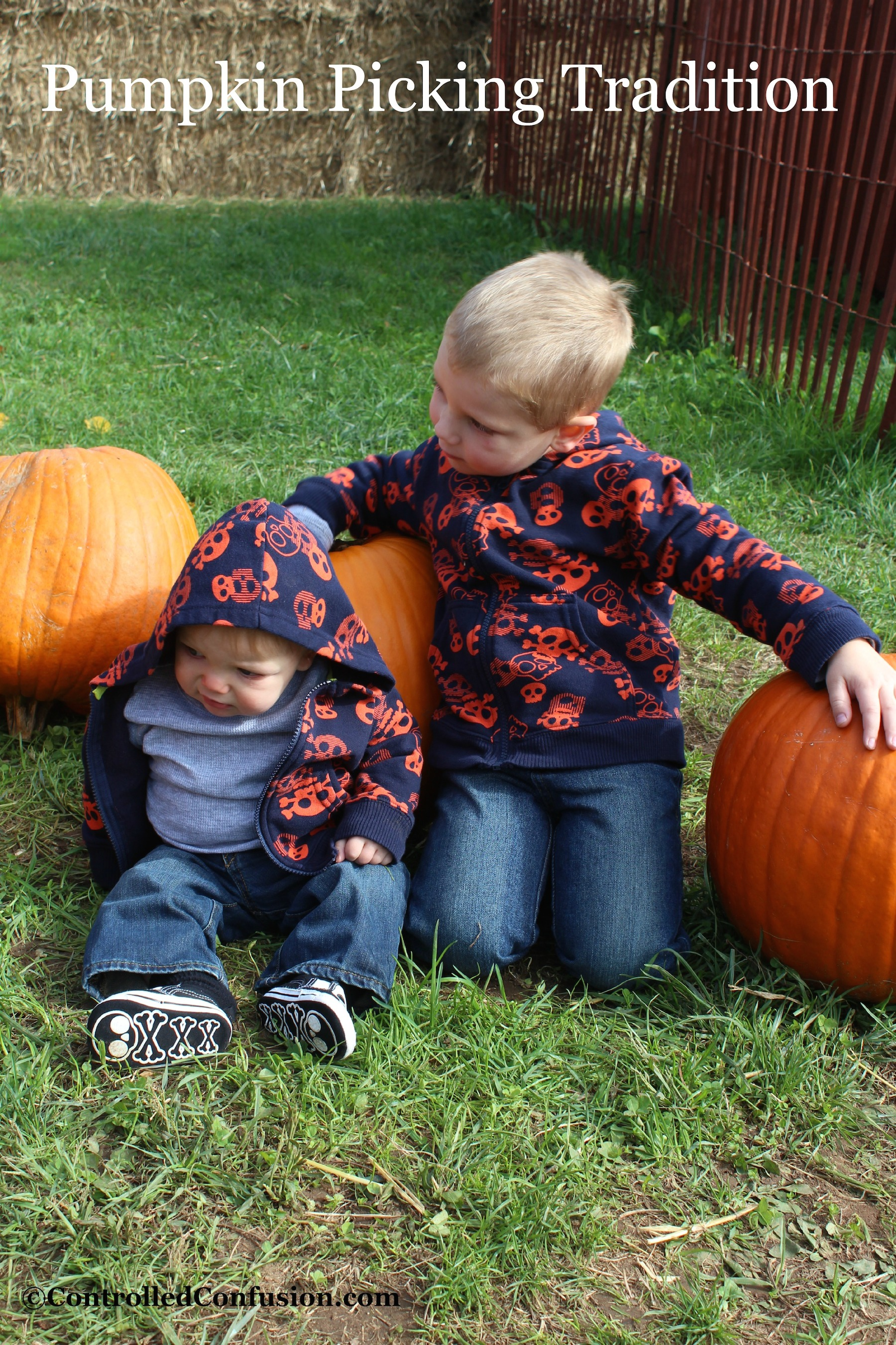 Pumpkin Picking Traditions With Friends