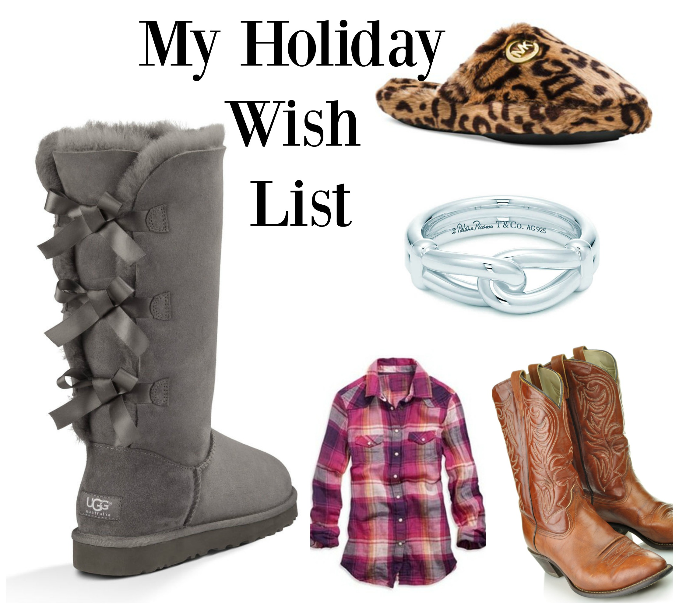 My Holiday Wish List