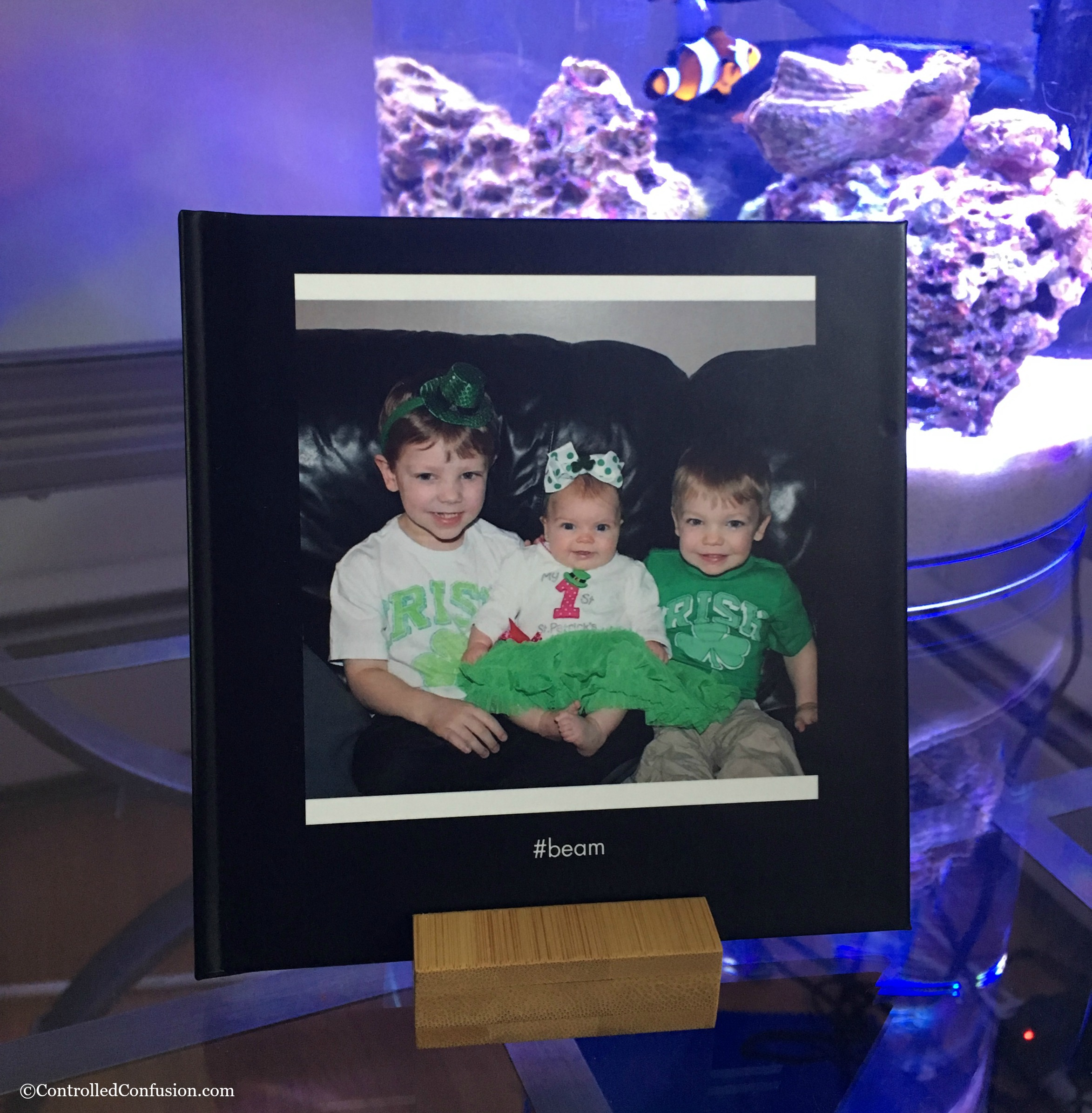 Create the Perfect Photo Book With FavePix by Shutterfly