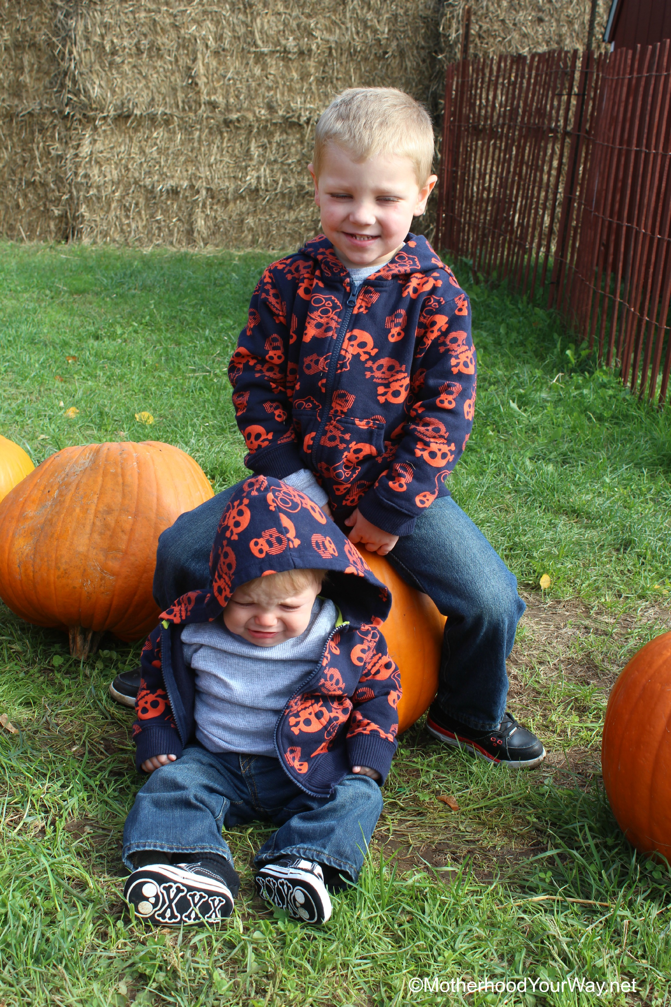 Wordless Wednesday- Unhappy Pumpkins