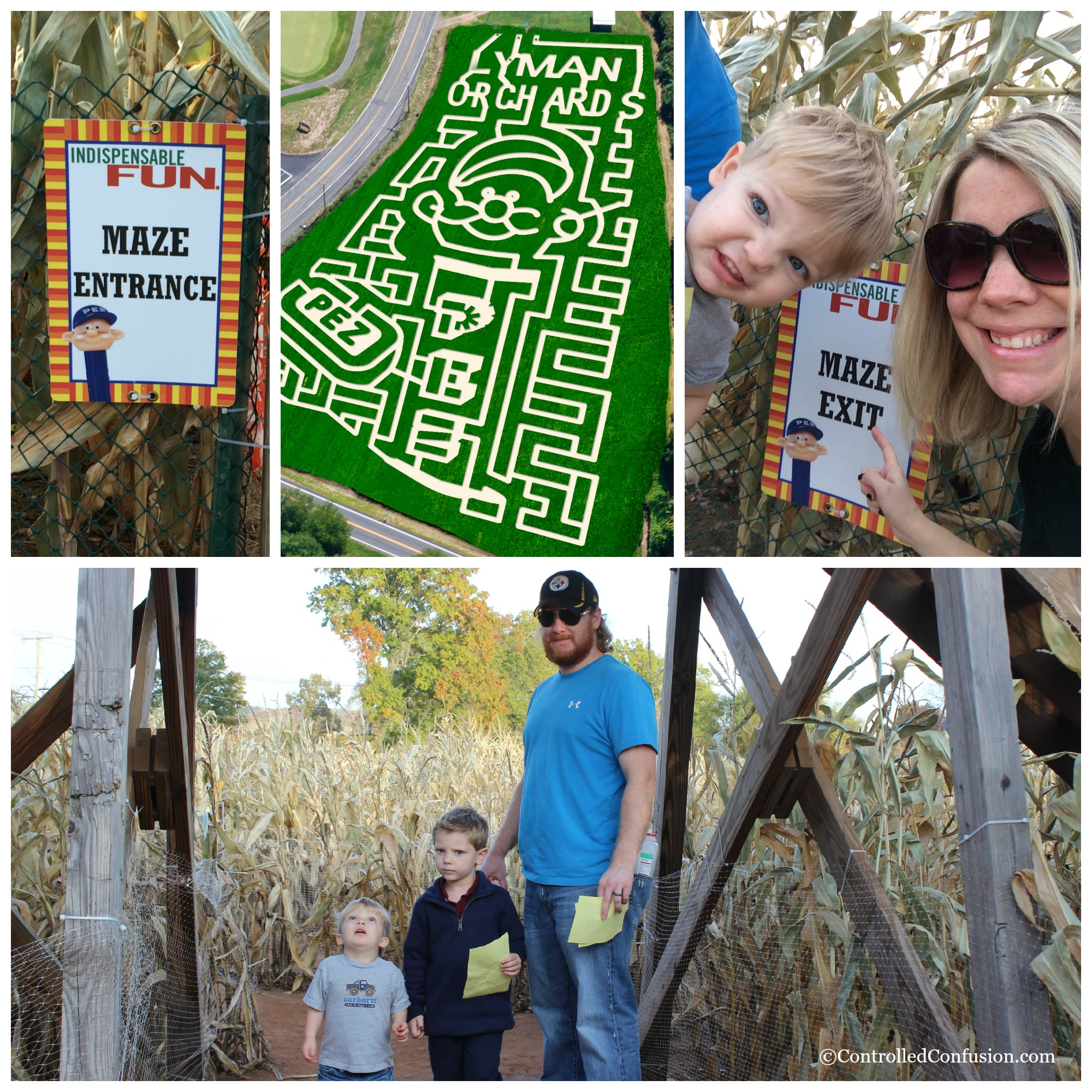 Family Fun At Lyman's Orchard for Our #LexusHarvest